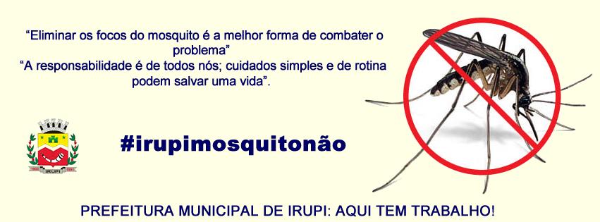 dengueII