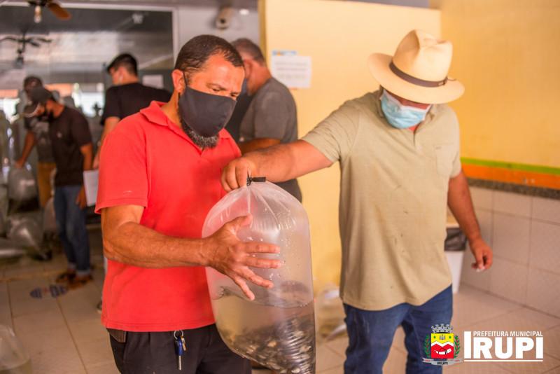 Entrega de alevinos, adquiridos por agricultores e moradores do município.