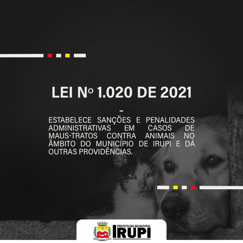 Prefeito Edmilson Meireles sanciona Lei contra os maus-tratos contra animais